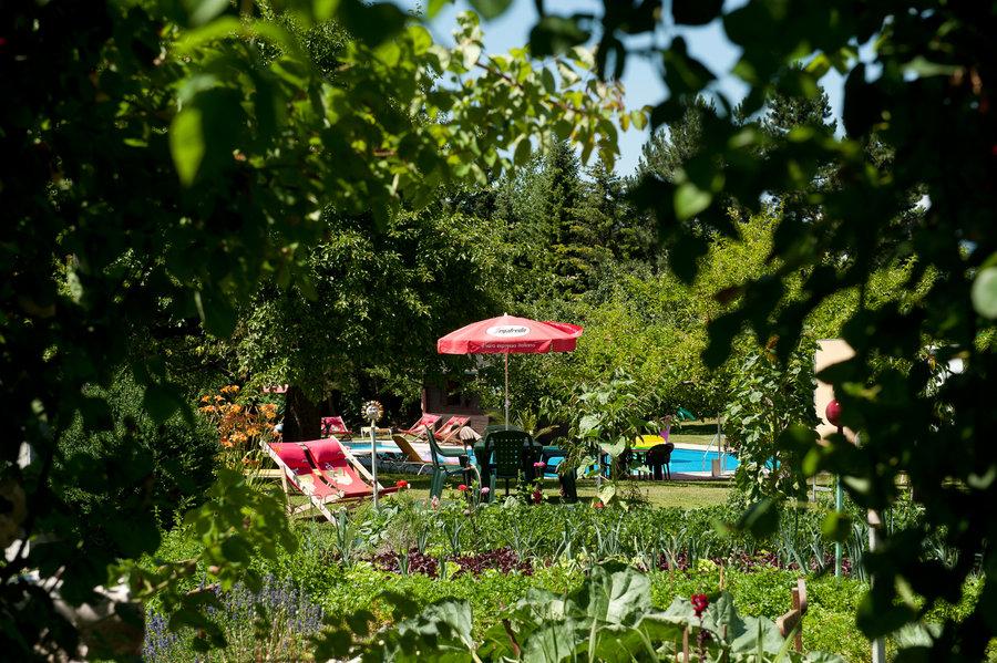 Il giardino con vista alla piscina