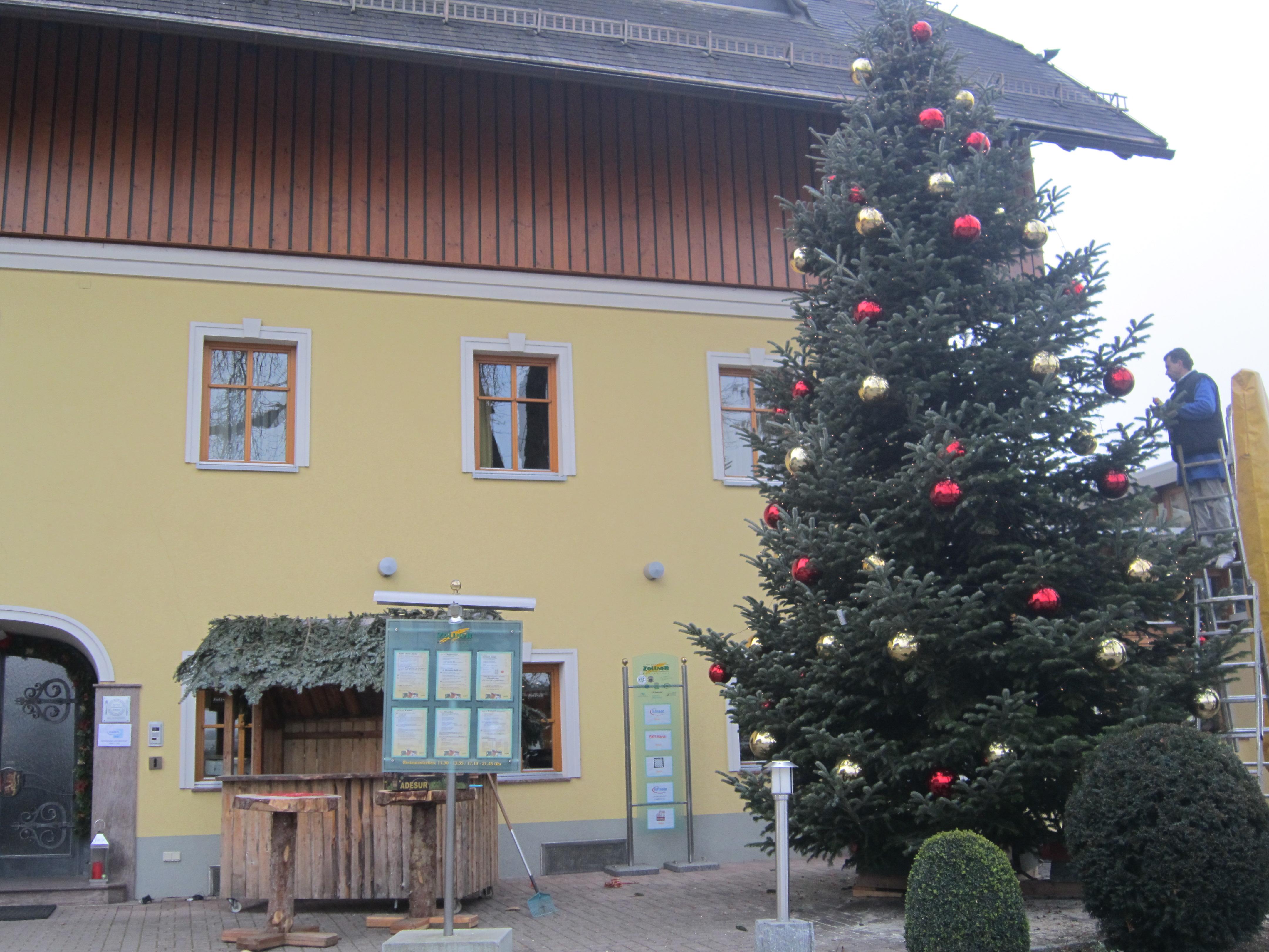 unser Drago beim Schmücken des Weihnachtsbaums